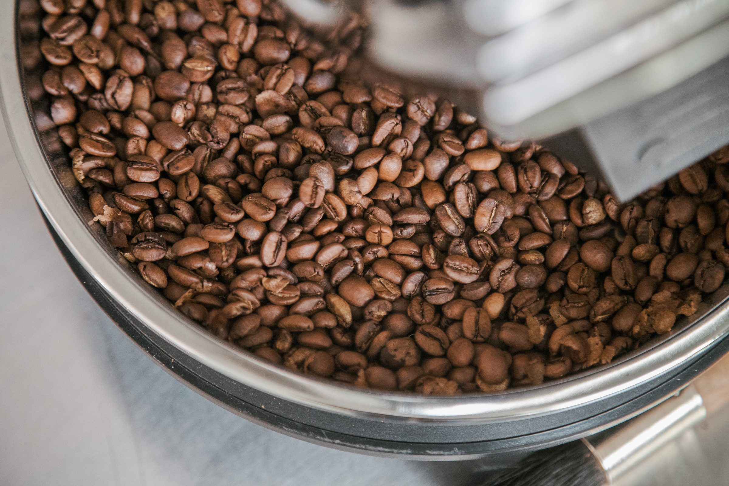 A closeup of coffee beans in the the Hottop Coffee Roaster's cooling chamber after roasting.
