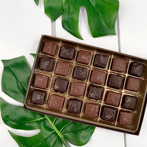 Ethel_M_Chocolates_Single_Layer_Milk_And_Dark_Chocolate_Sea_Salt_Caramel_Collection_With_Open_Box_Overhead_View_With_Green_Leaf_Background