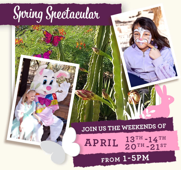 Spring spectacular, April 13th-14 & 20th-21st, 1-5pm