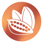 block image - cocoa pods on copper icon