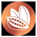 block image - cocoa pods on copper icon