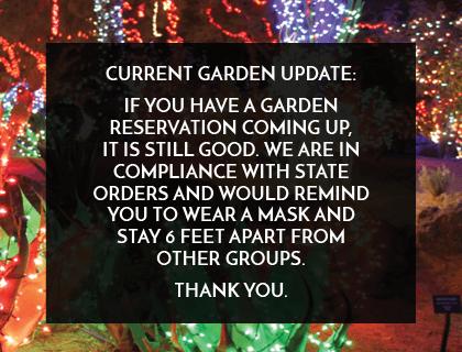 Current Garden Update