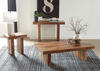 Sheesham End Table by Scott Living