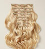 Light Blonde (22) Wefts 10 Pc Set