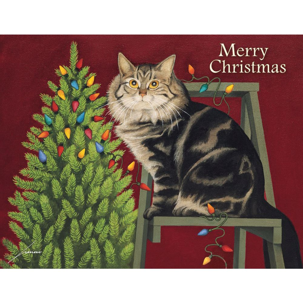 Stringing-Lights-Boxed-Christmas-Cards-1