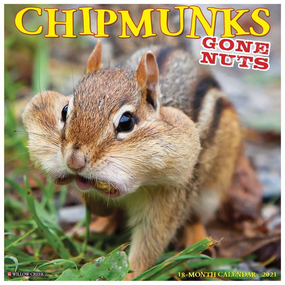 Chipmunks Gone Nuts 2021 Wall Calendar