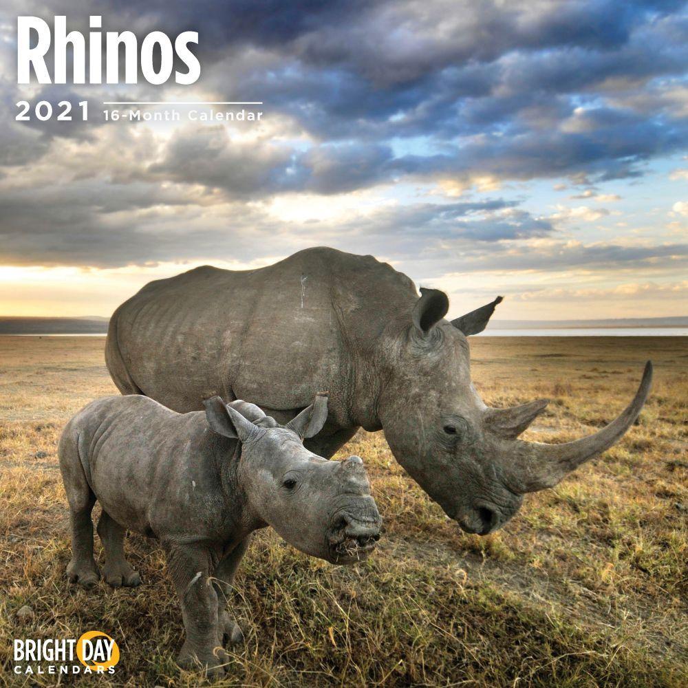 2021 Rhinos Wall Calendar