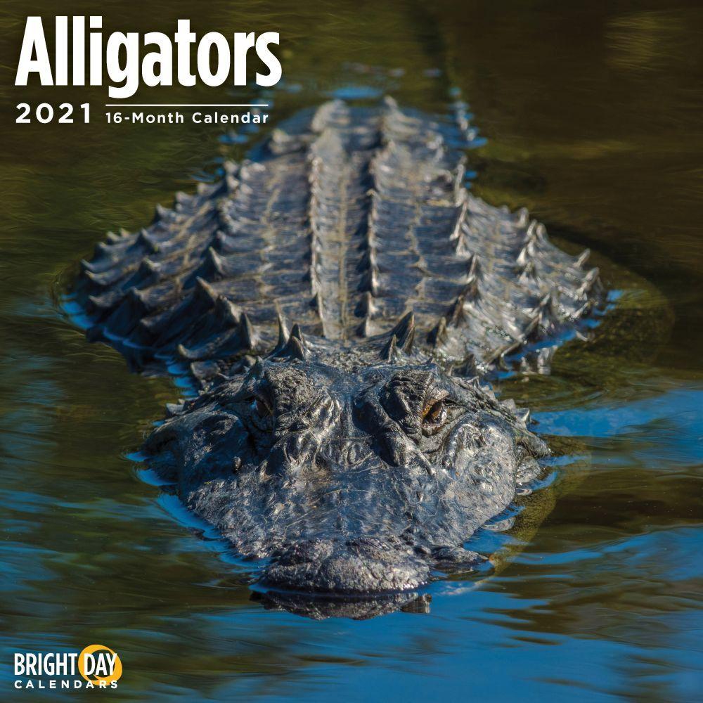 2021 Alligators Wall Calendar