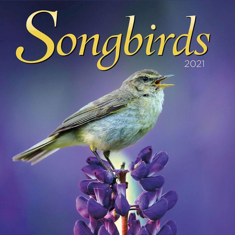 2021 Songbirds Wall Calendar