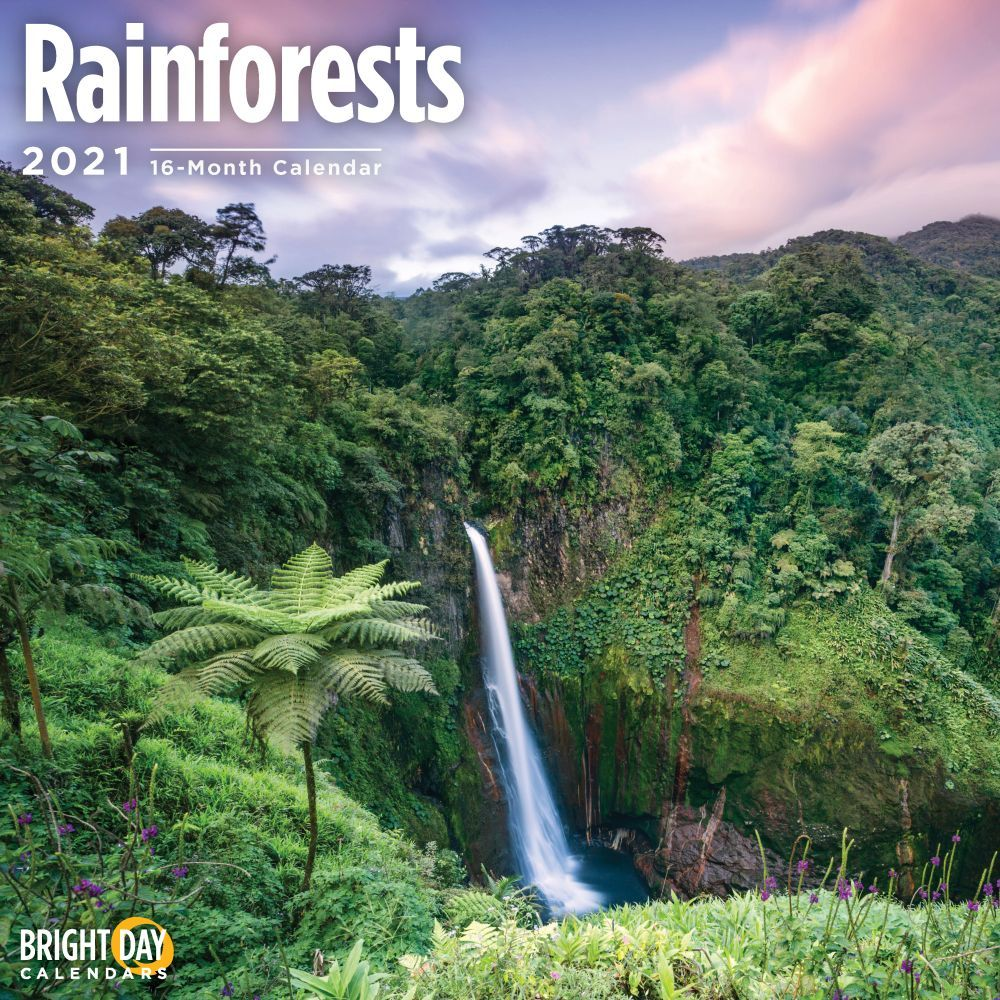 2021 Rainforests Wall Calendar
