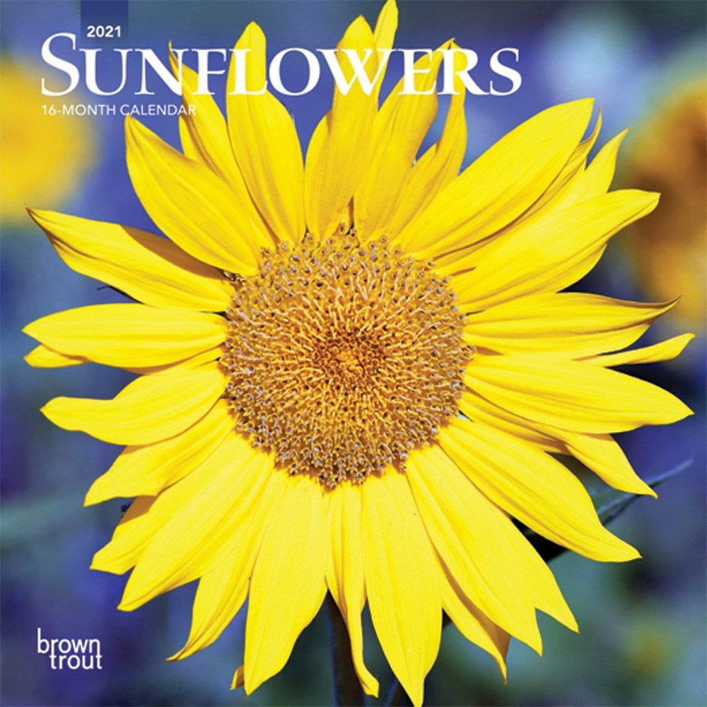 2021 Sunflowers Mini Wall Calendar