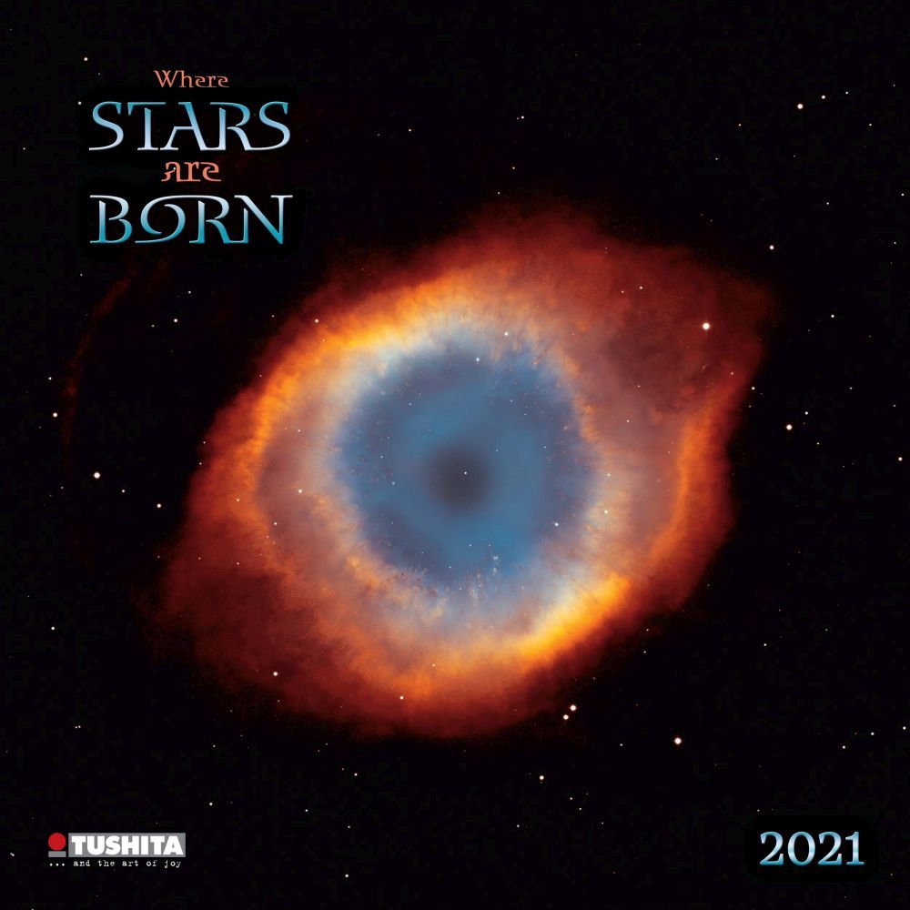Star is Born 2021 Poster Calendar