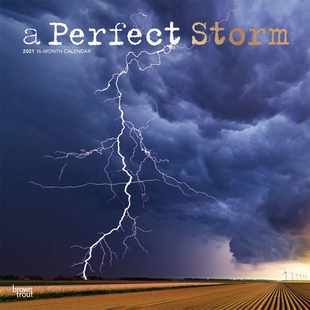Perfect Storm 2021 Wall Calendar