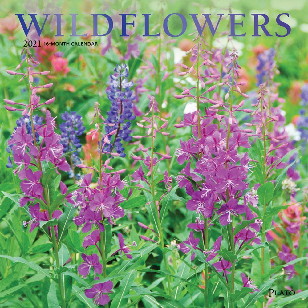 Wildflowers 2021 Wall Calendar