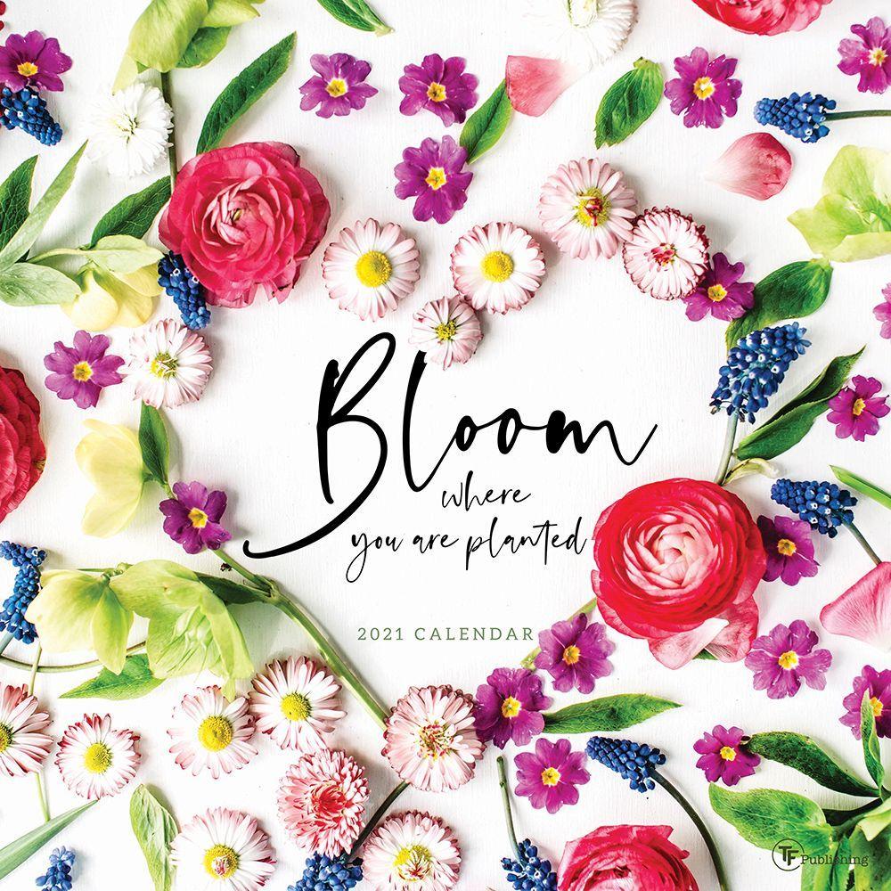 2021 Bloom by Hallmark Wall Calendar
