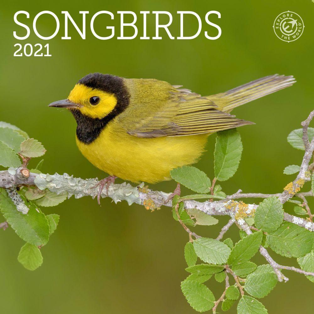 2021 Songbirds Mini Wall Calendar