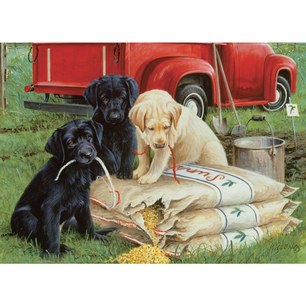 Best Just Dogs 1000 Piece Puzzle You Can Buy