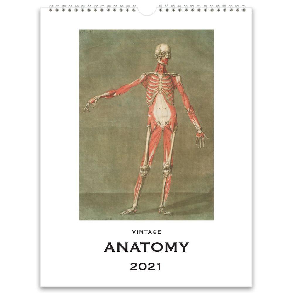 2021 Anatomy Nostalgic Wall Calendar
