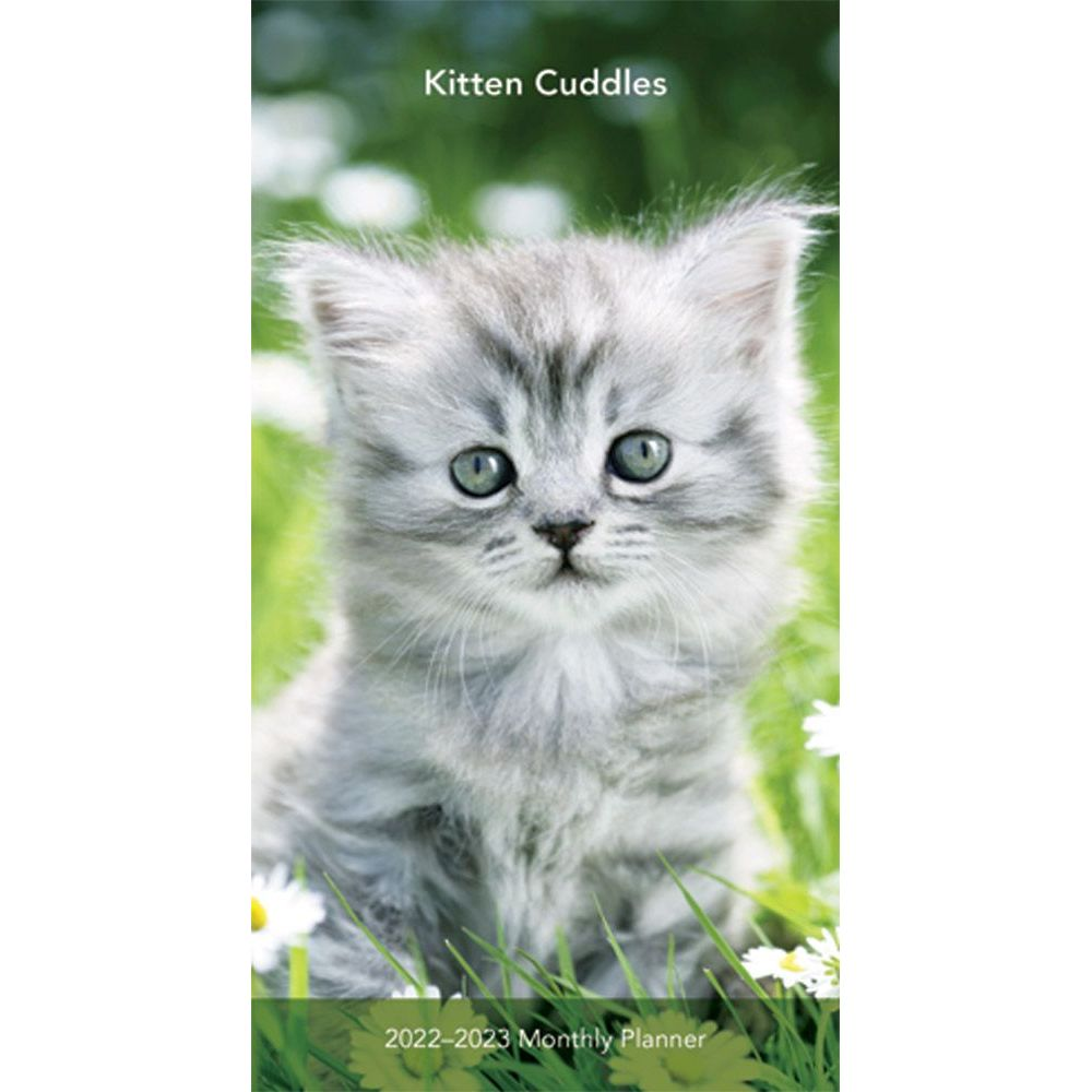 Kitten Cuddles 2022 Two Year Pocket Planner