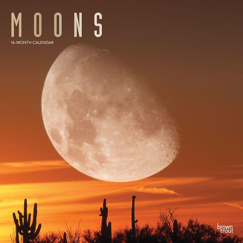 2021 Moons Wall Calendar