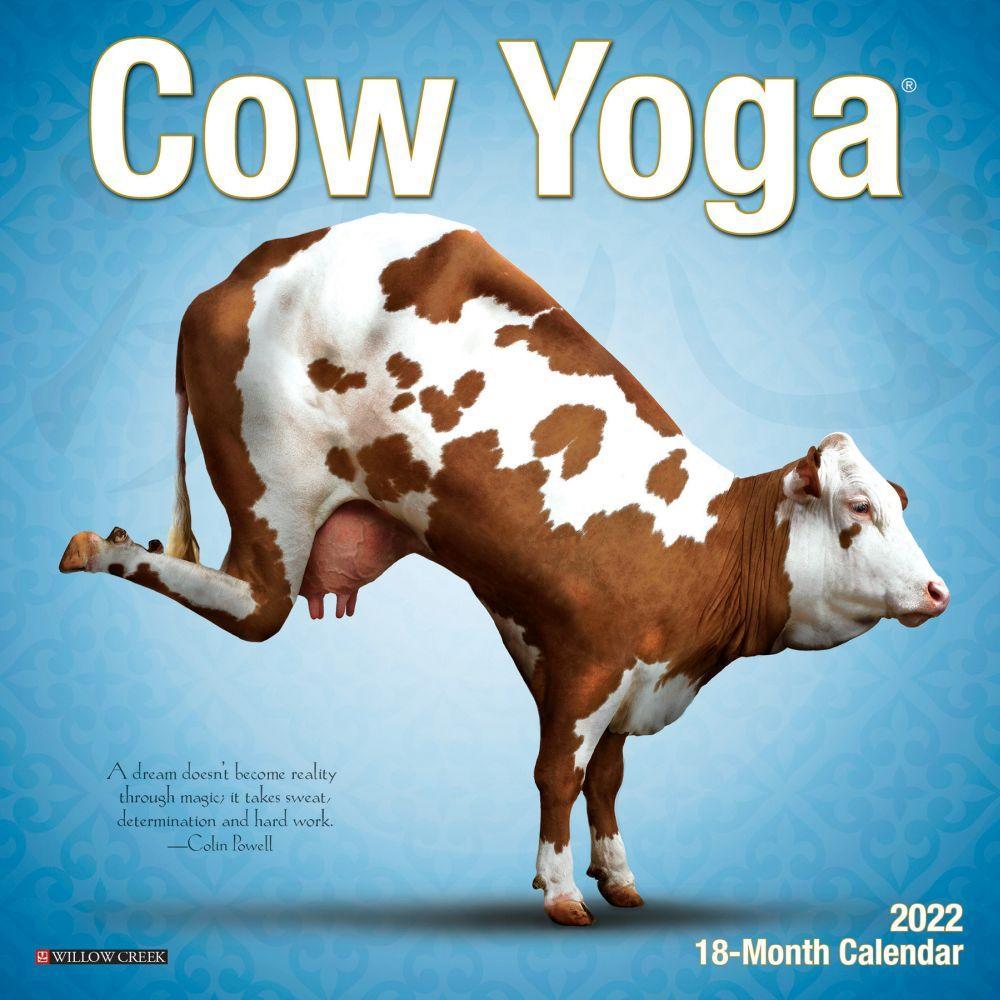 2022 Cow Calendar.Cow Yoga 2022 Mini Wall Calendar Calendars Com