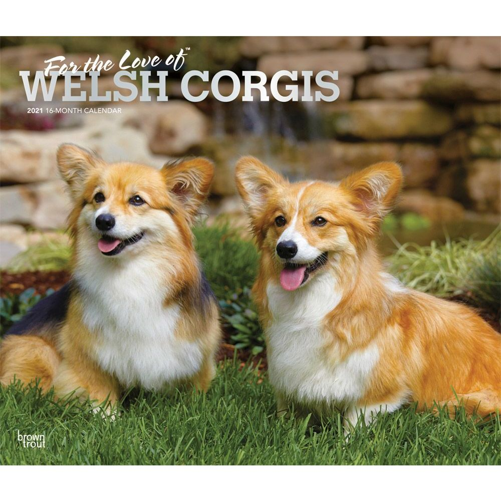 2020 CARDIGAN WELSH CORGI ADULT CALENDAR