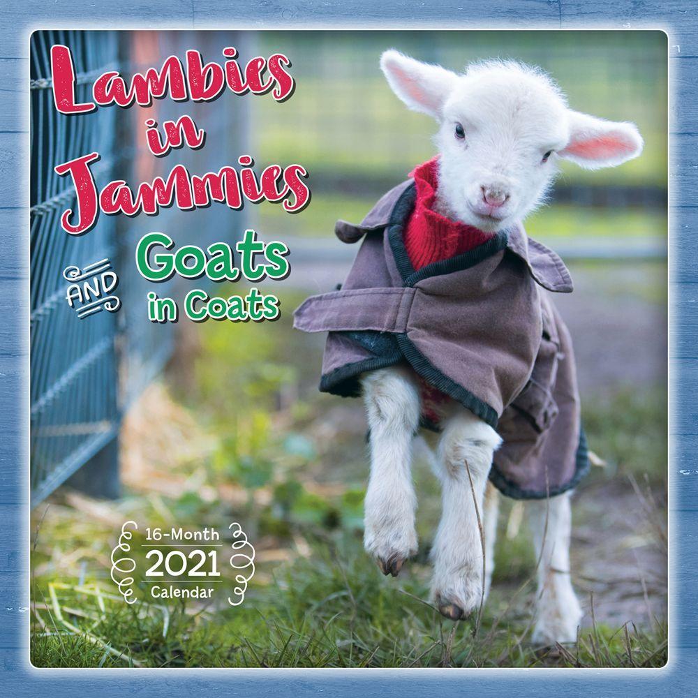 Lambies in Jammies 2021 Wall Calendar