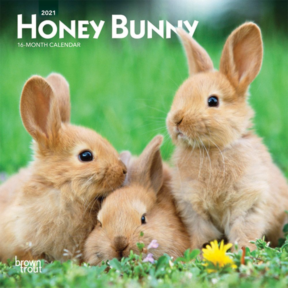 2021 Honey Bunny Mini Wall Calendar