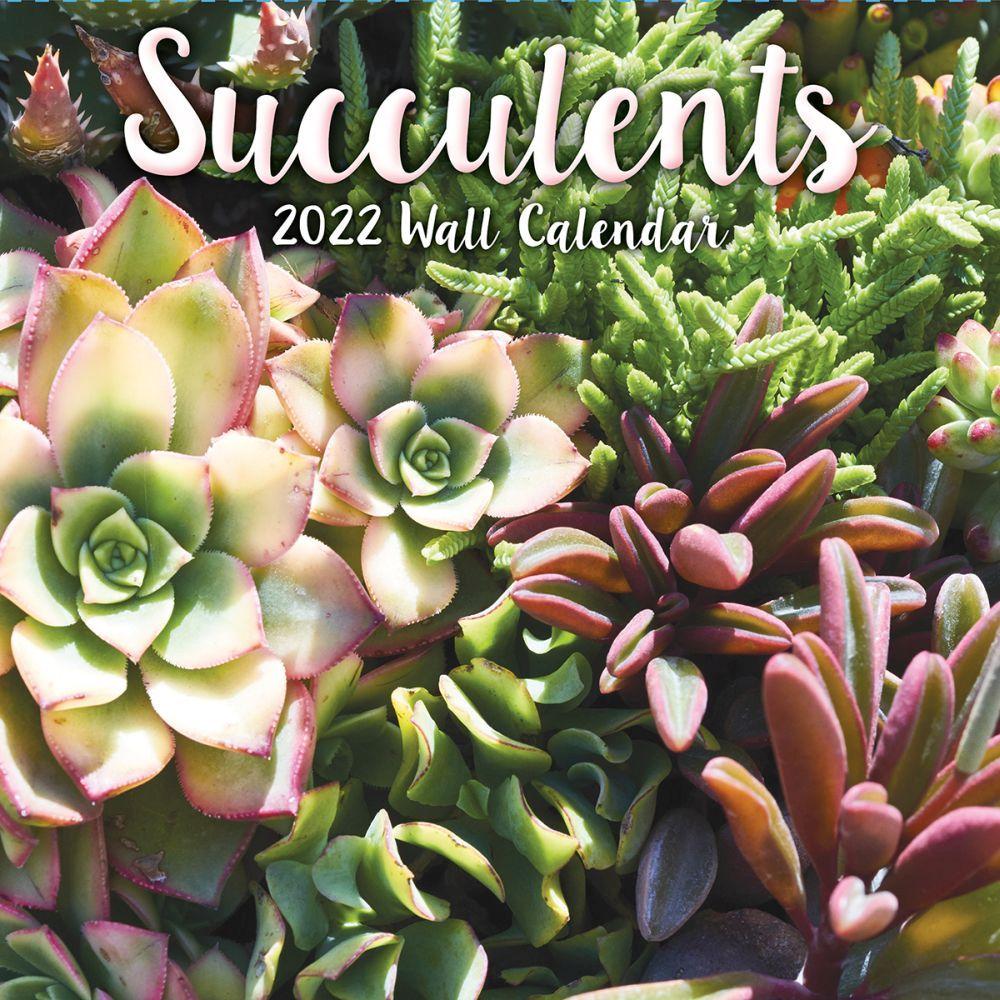 Succulents 2022 Wall Calendar