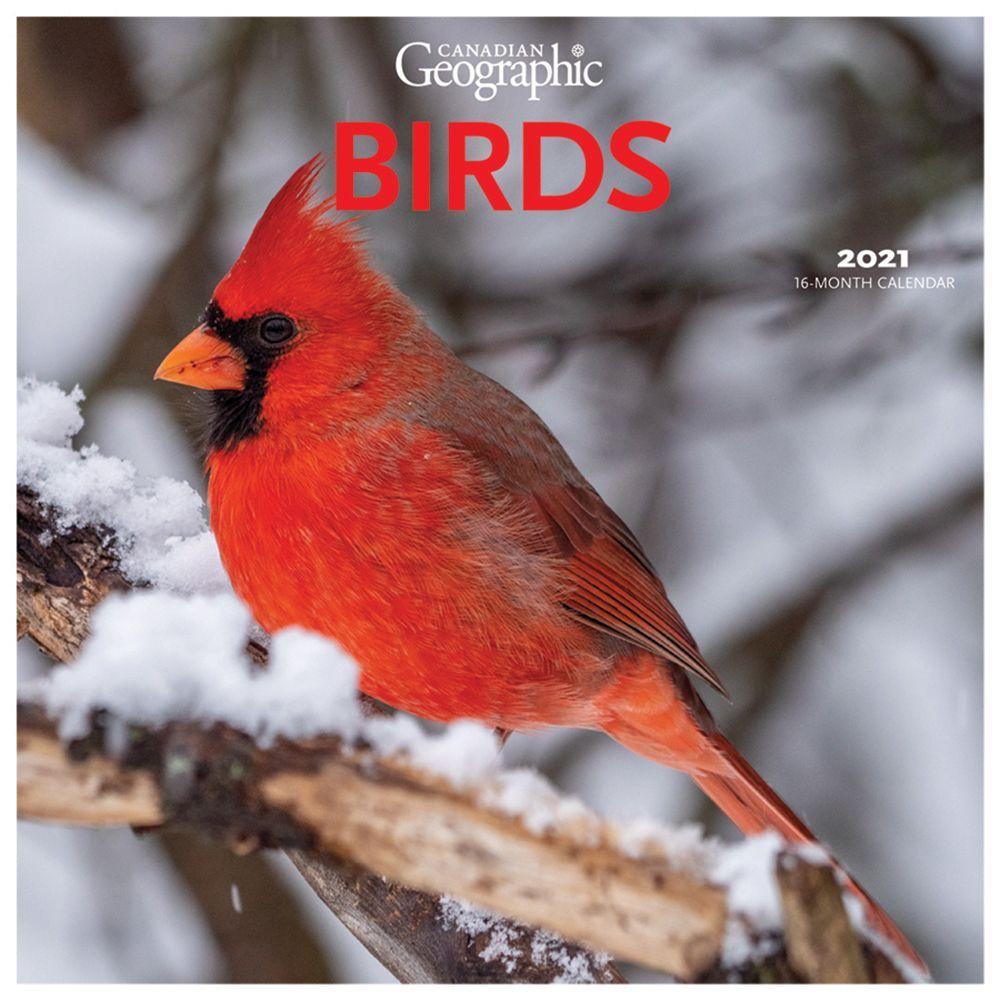 2021 Birds Wall Calendar