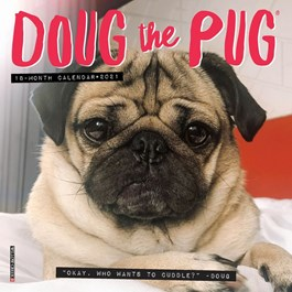 Doug the Pug Mini Wall Calendar