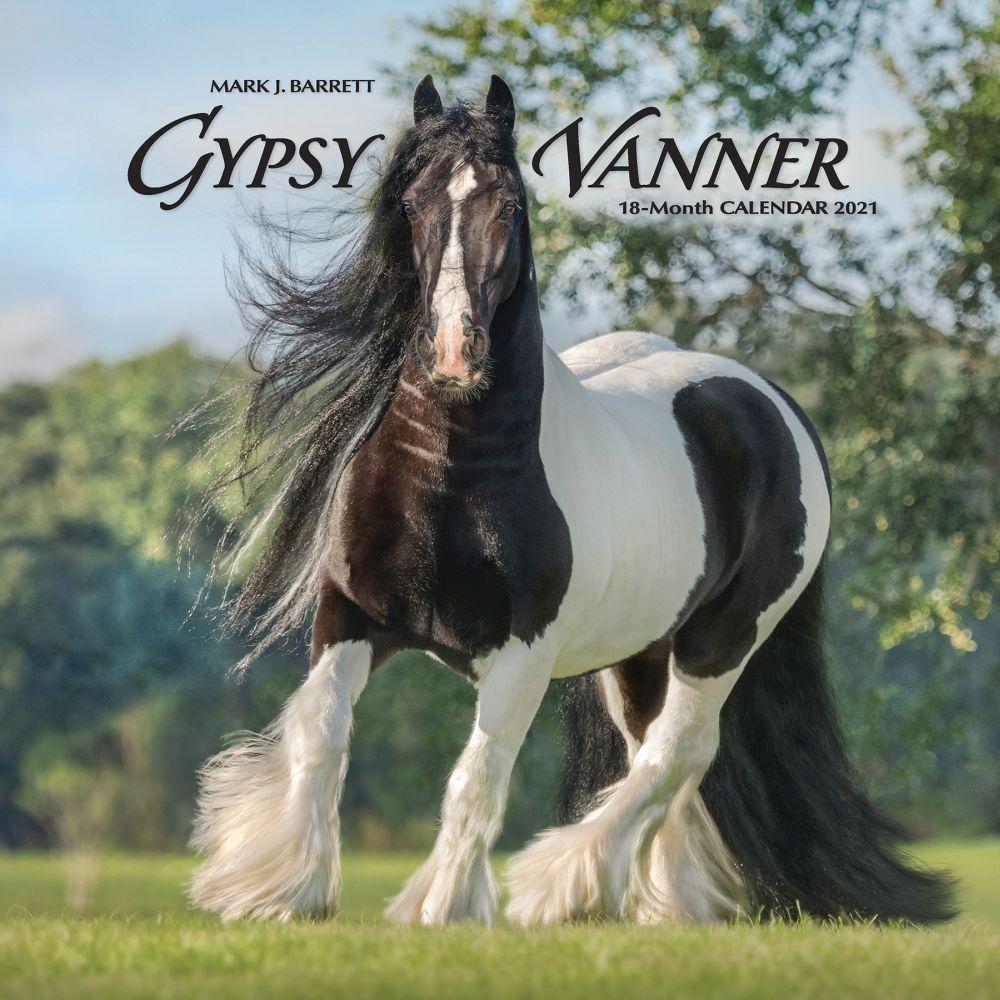 Gypsy Vanner Horses 2021 Wall Calendar