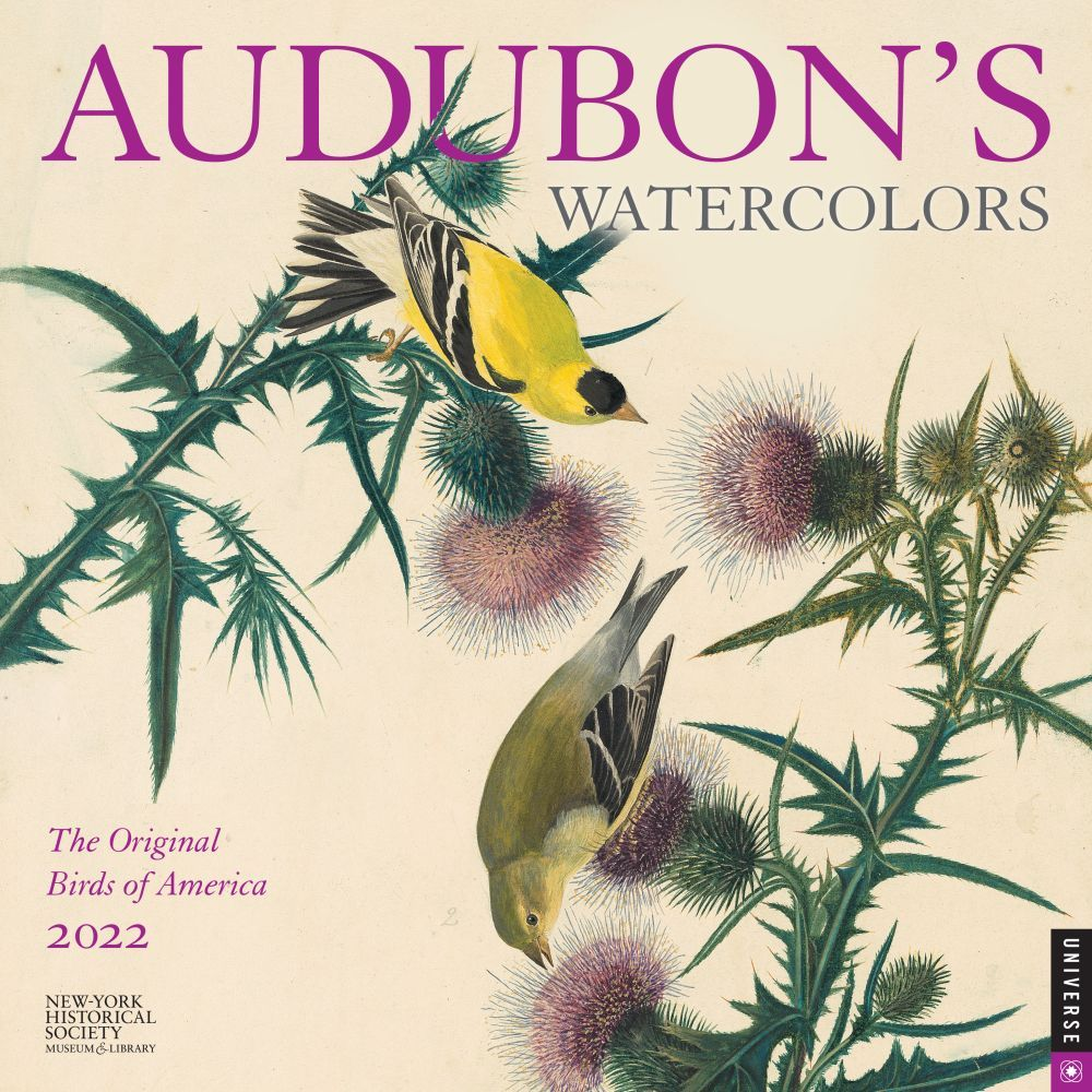 Audubons Watercolors 2022 Wall Calendar