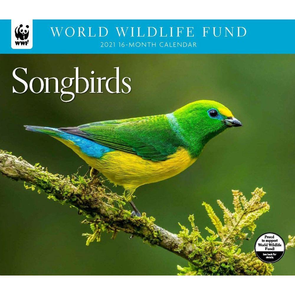 2021 Songbirds WWF Wall Calendar