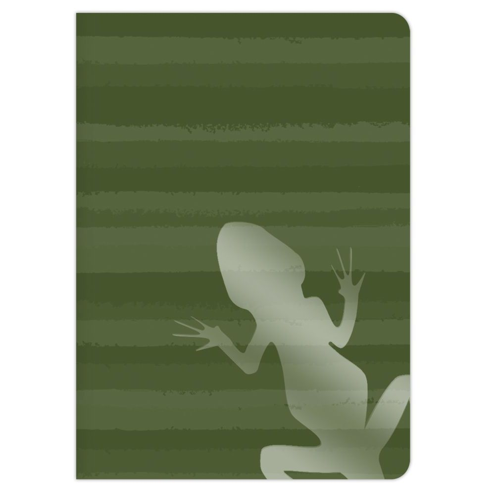 HERE LIZARD, LIZARD 2 PACK JOURNAL SET-4
