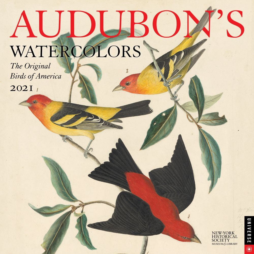 2021 Audubons Watercolors Wall Calendar