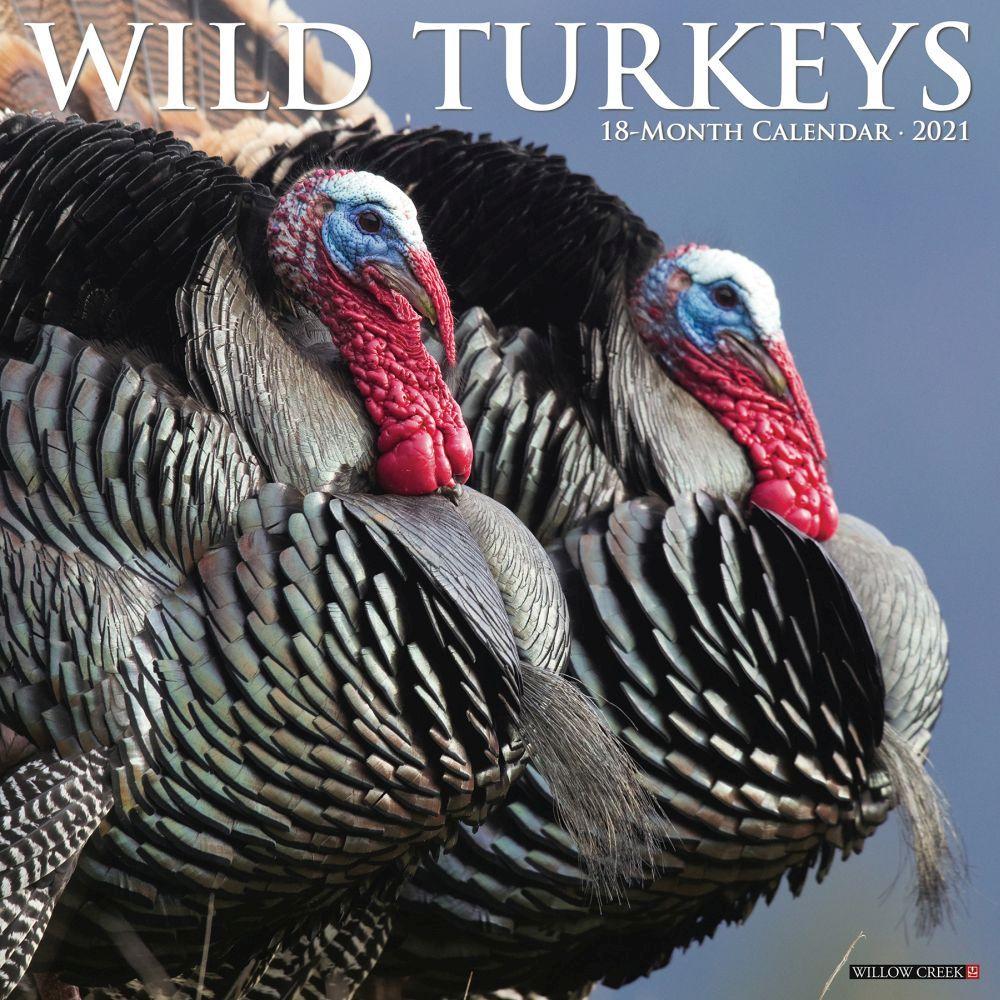 Wild Turkeys 2021 Wall Calendar