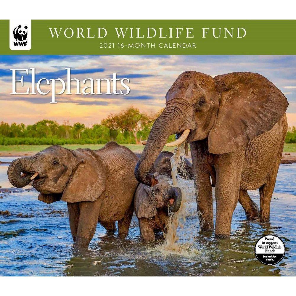 2021 Elephants WWF Wall Calendar