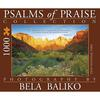 Psalms-of-Praise-Towers-1000-Piece-Puzzle-1