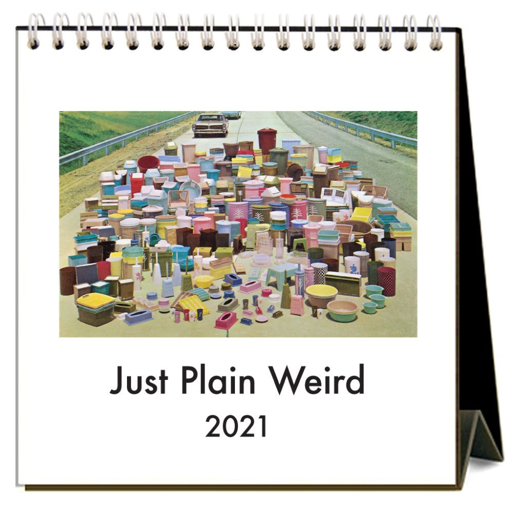 2021 Just Plain Weird Easel Calendar