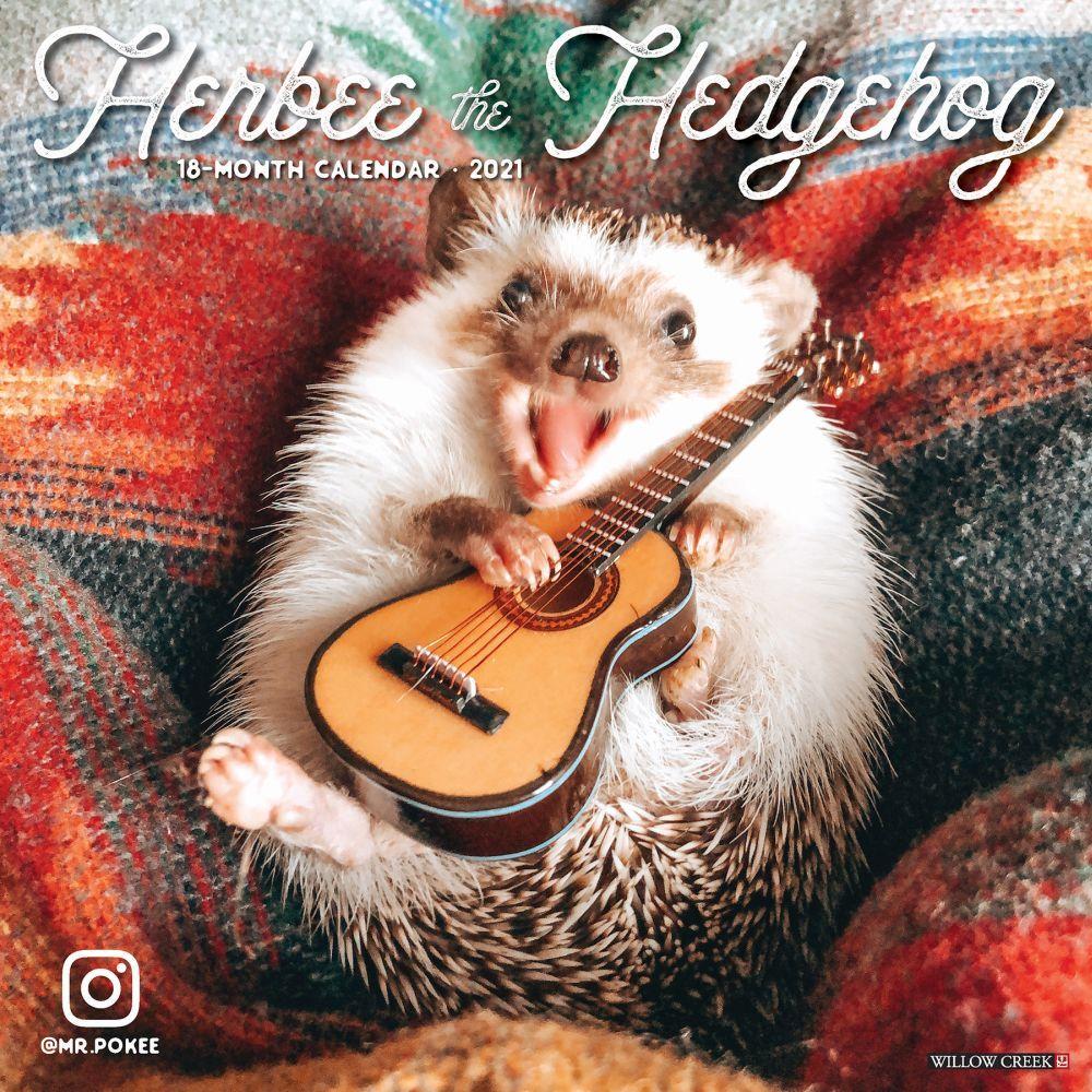 Herbee the Hedgehog 2021 Wall Calendar