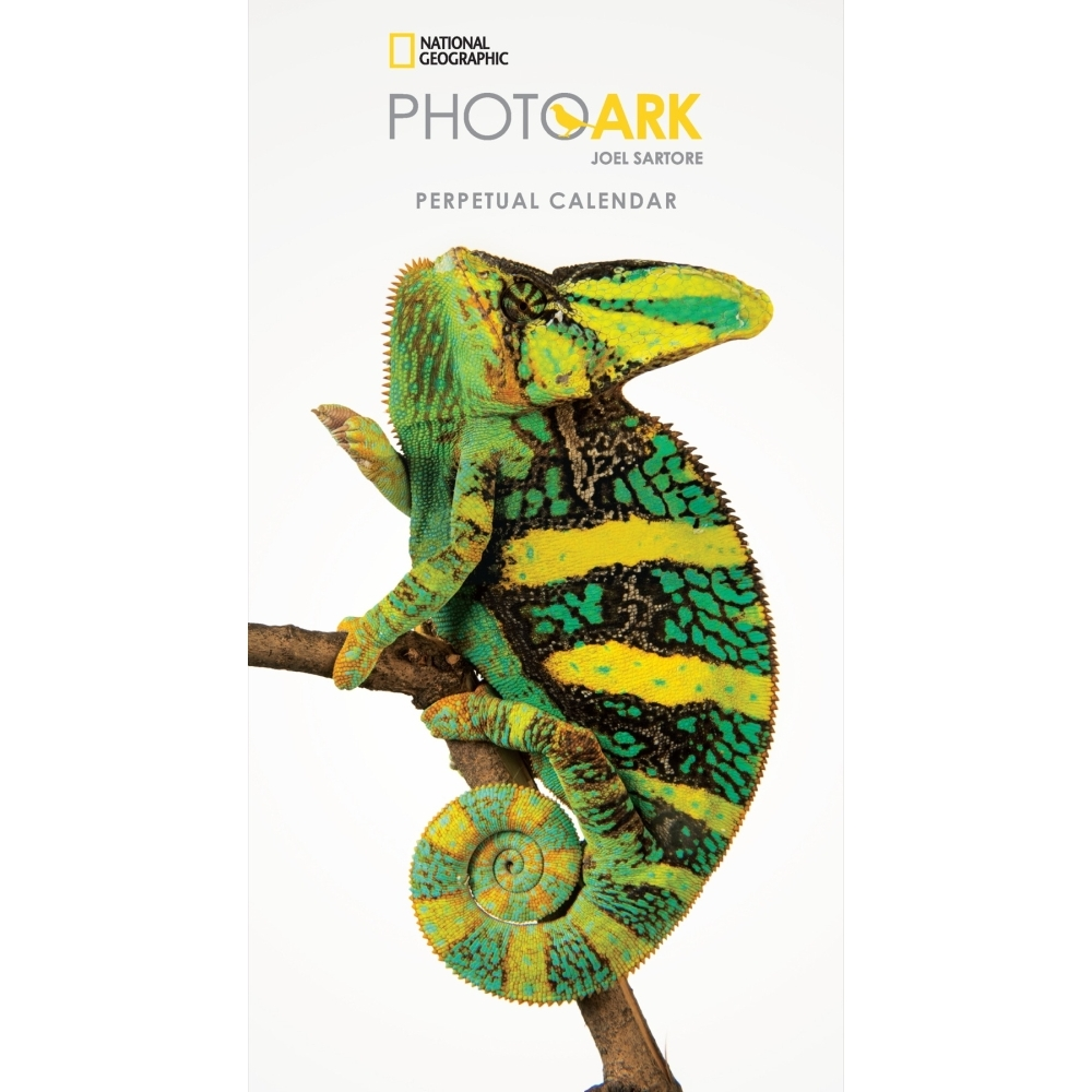 Photo-Ark-Mini-Wall-Calendar-1