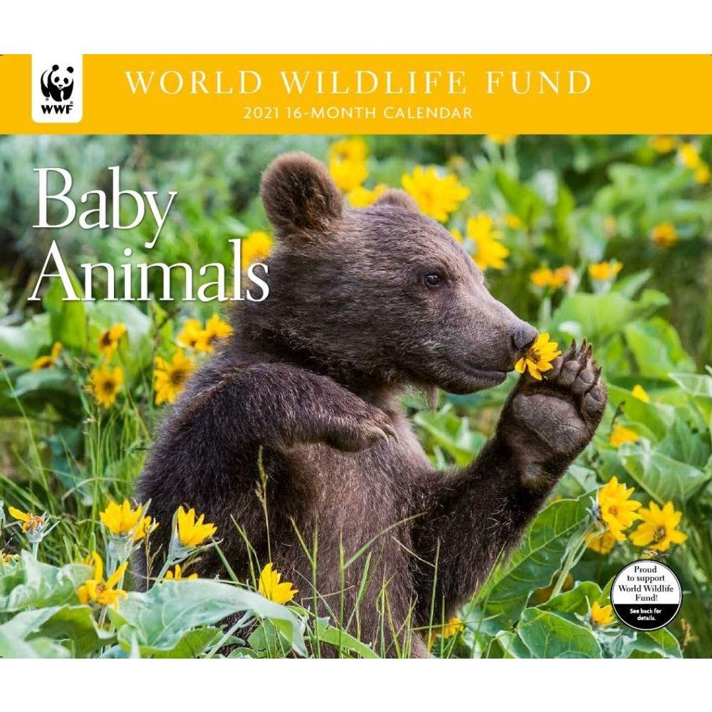 2021 Baby Animals WWF Wall Calendar