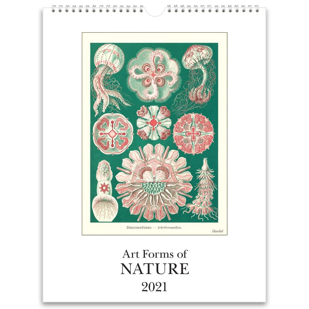 2021 Art Forms of Nature Wall Calendar