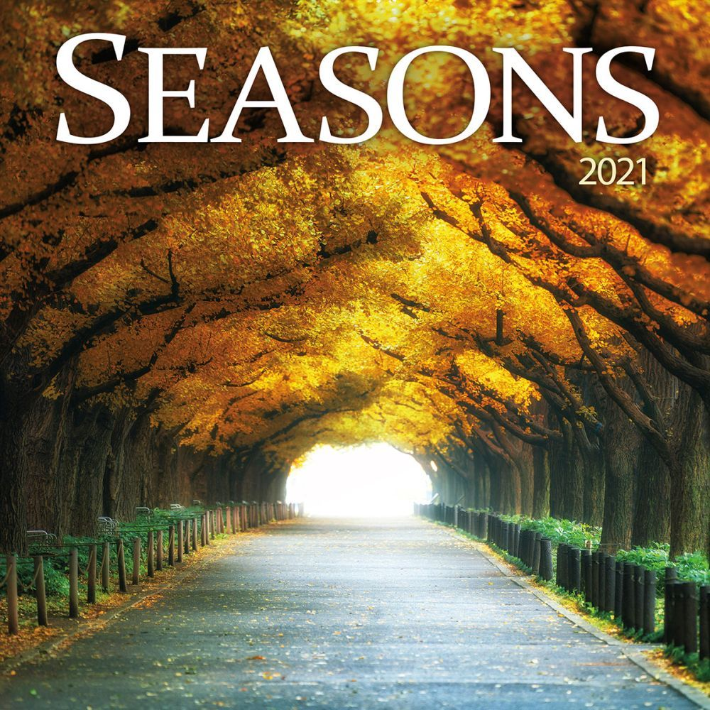 Seasons of the Year | Practice Portuguese