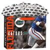 Florida-Gators-Medium-Gogo-Gift-Bag-1