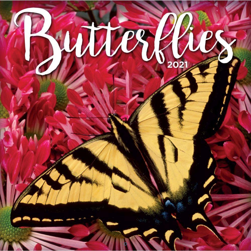 2021 Butterflies Wall Calendar