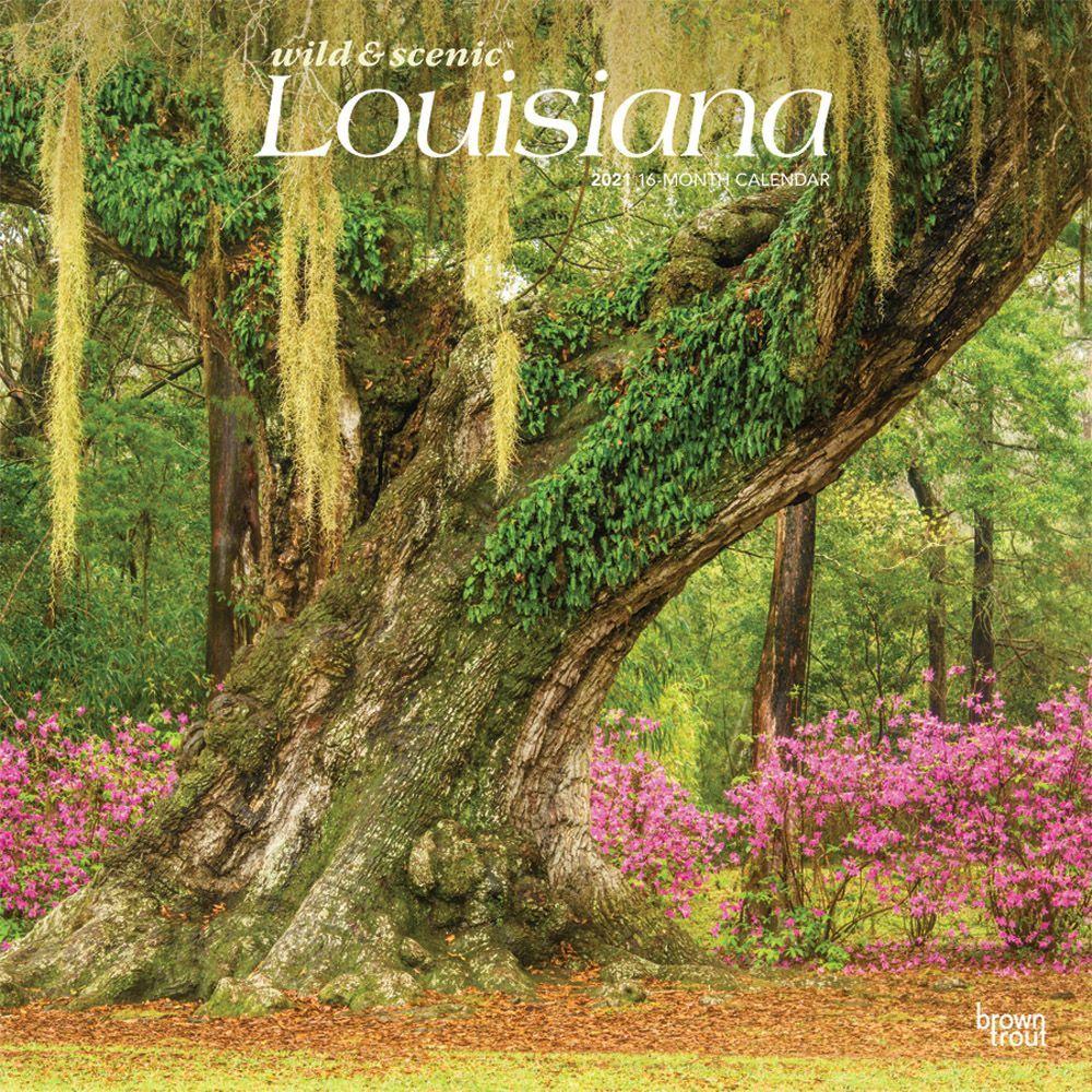 Louisiana Wild and Scenic 2021 Wall Calendar