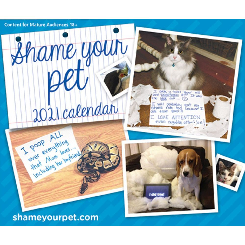2021 Shame your Pet Desk Calendar