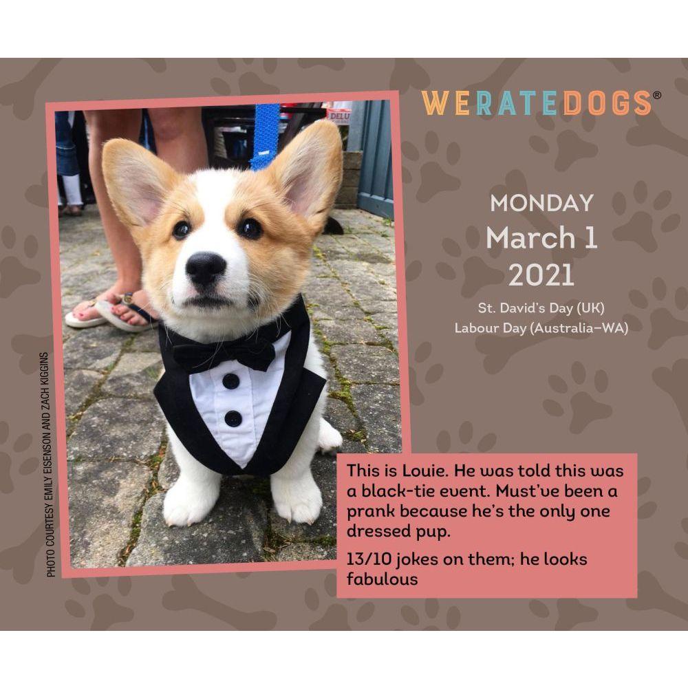 We Rate Dogs Desk Calendar - Calendars.com